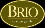 brio-3-color-logo