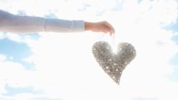 elm-131167-Valentines-Day-1